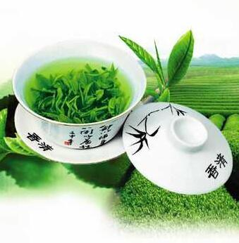 Green Tea Extract 80% Tea Polyphenols 50g   Powerful Antioxidant free shipping