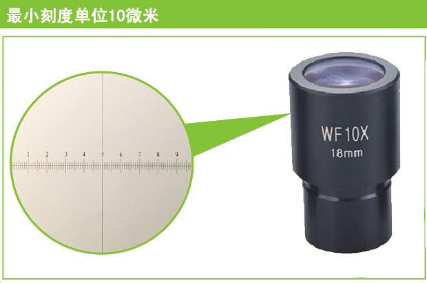 10X wide-angle field of view the microscope eyepiece biological interfaces 18 23.2 10 times with scale<br><br>Aliexpress