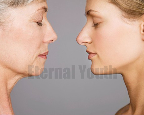 20 10ml Boto x Argireline Acid Facial Lift INSTANT AGELESS Powerful Anti wrinkle Aging Face Skin