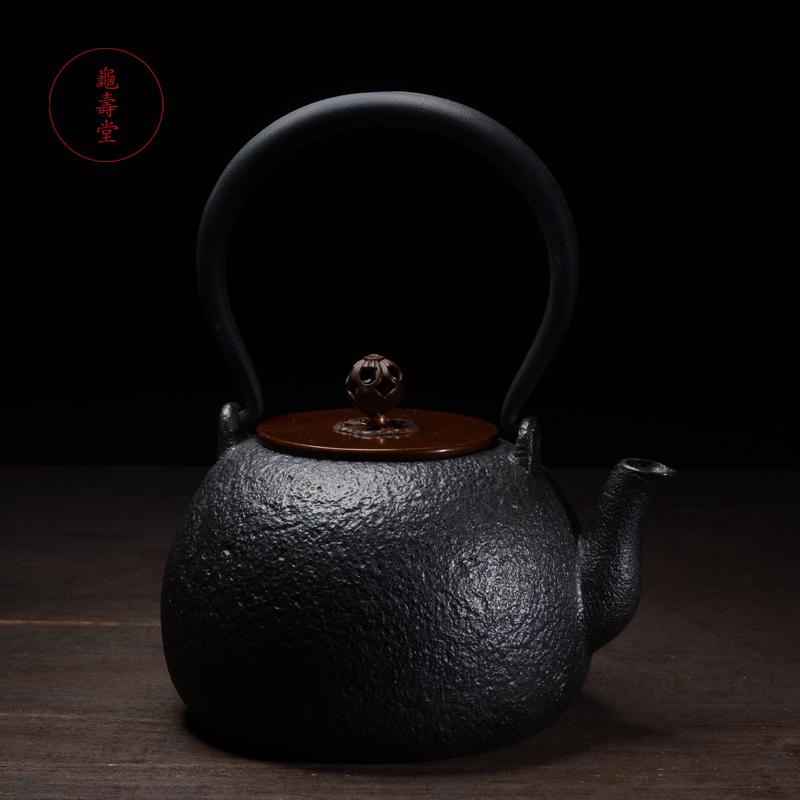 Royal Palace Cast Iron Teapot Set Tea Pot 800ml Drinkware Kung Fu Infusers Cooking Tools Free Shipping(China (Mainland))