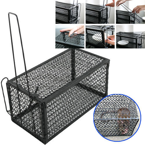 Rat Catcher Spring Cage Trap Humane Large Live Animal Rodent Indoor Outdoor(China (Mainland))