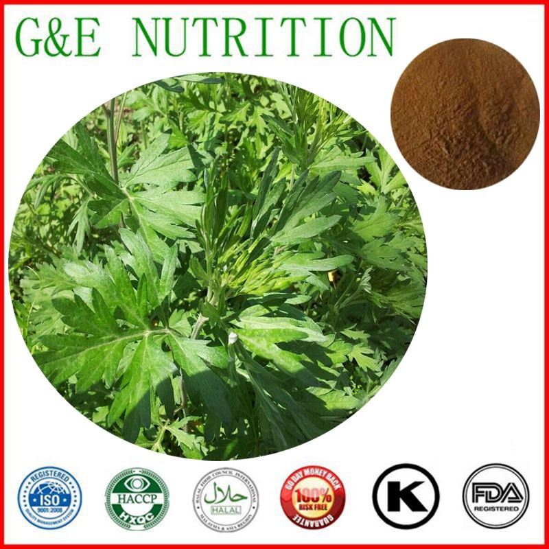 Top Sale Folium Artemisiae Argyi Extract/Chinese mugwort leaf Extract 700g