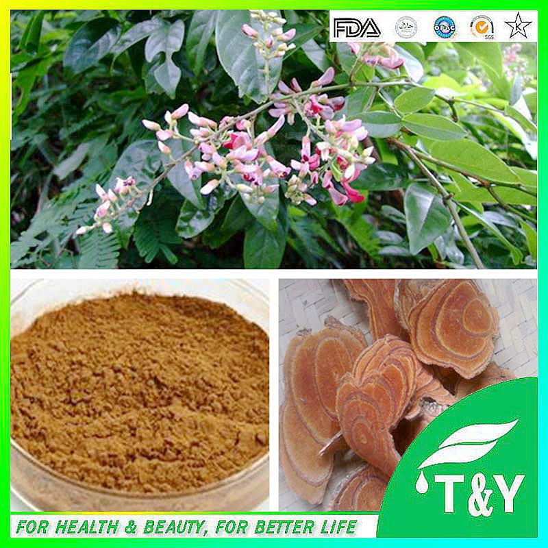 natural Caulis Spatholobi Extract powder 10:1 Catechol Caulis Spatholobi<br><br>Aliexpress