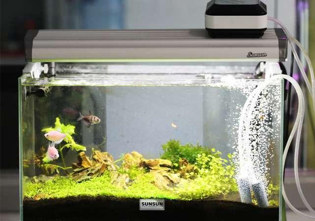 Ac And Dc Pumps Oxygen Tank Pump Ultra Quiet Aquarium Fish
