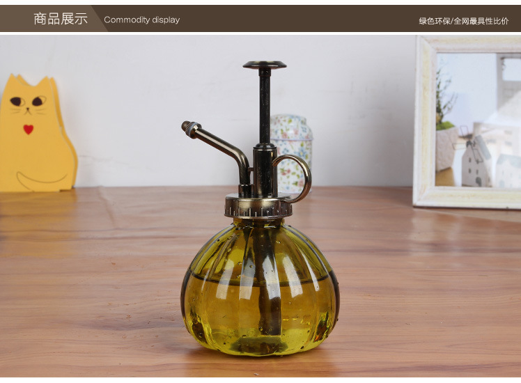 Vintage Pressure Sprayer Glass Bottle Watering Cans Pot For Succulent Plants Bonsai Flower Watering Pot Glass(China (Mainland))