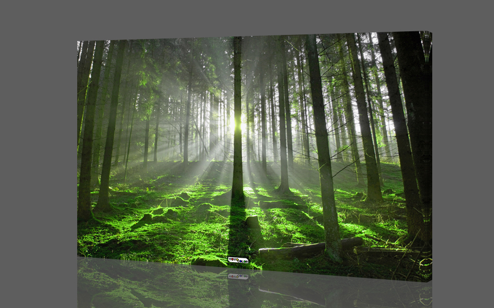 Wall Art Trees Green : Aliexpress buy green forest wood trees large hd