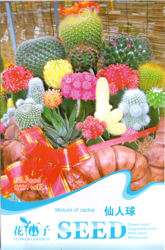 10Mixture of Cactus Cactaceae Seeds High Appreciation Value DIY Home Garden F006(China (Mainland))