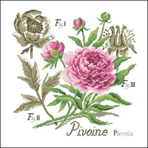 Free Delivery Top Quality Botanical Counted Cross Stitch Kit Pivoine Peony Flower botanique cross stitch(China (Mainland))