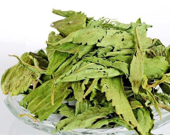 SALE New 50g Premium Natural Organic Stevia Rebaudiana herbal tea Sweet Taste Relax Health Care free ship(China (Mainland))