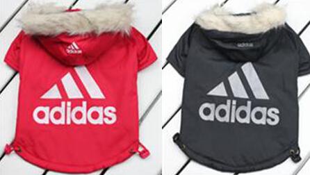 pet clothes pet jacket dog clothes Pet products, dog clothing,Fur collar cotton dog coat,the warm dog clothes(China (Mainland))