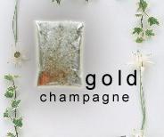 Australian free shipping Nail Art Champagne Gold Color glitter powder DIY Nail Polish Nail Art for Lady Girl 50g/bag(China (Mainland))