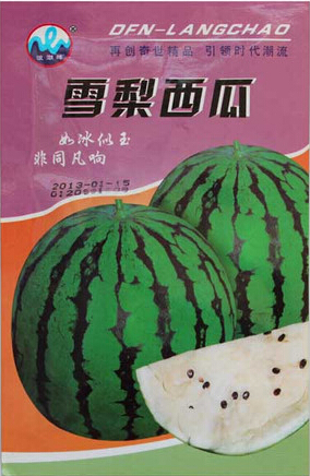 1 Original Pack, 10g seeds / pack, Snow Pear Water Melon Seeds White Inside Green Skin Black Stripe #NF243(China (Mainland))
