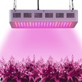 600W LED Grow Lights Full Spectrum with CE FCC RoHS for Hydroponic Greenhouse Grow Tent Lightings