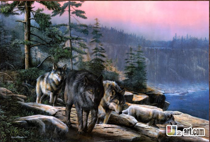 Wolf prints high quality canvas animal prints picture canvas prints hang in the living room animal of nature(China (Mainland))