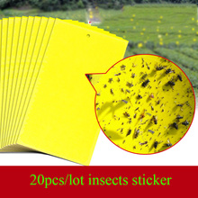 20pcs/lot Sided PVCStrong Flies Traps Bed Bugs Sticky Board Catching Aphid Insects Killer Whitefly Thrip Gnat Fruitfly HH16174(China (Mainland))
