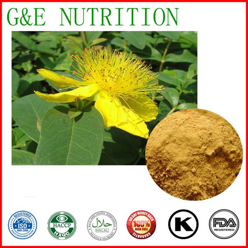 Hot sale organic St johns wort extract Powder,Saint Johns Wort P.E. 400g<br><br>Aliexpress