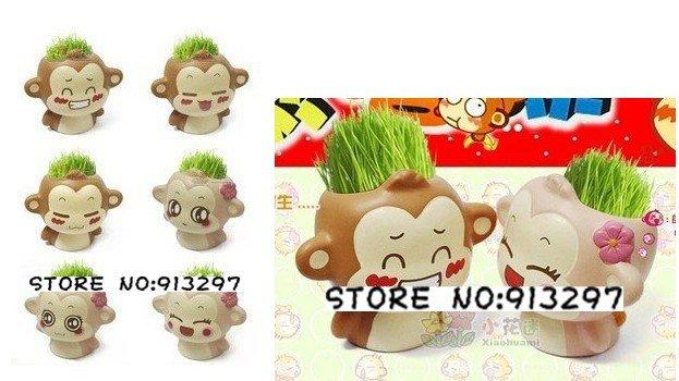 wholesale retail cartoon Gift Hair man monkey Plant Bonsai Grass Doll Office Mini Plant Fantastic Home Decor pot+seeds 6 design(China (Mainland))