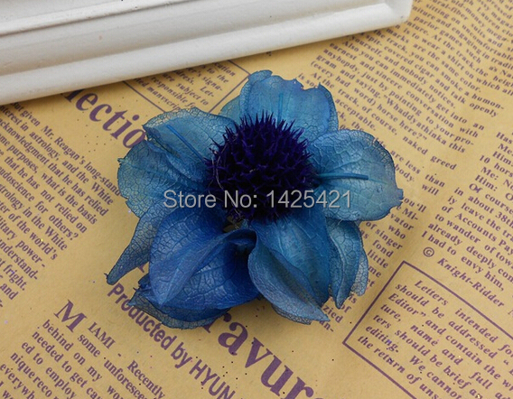 50pcs Sale!!! Blue Dried Hibiscus flowers PreservedFreshFlower Wedding Decor DIY artificial flowers Eco-Friendly flowers(China (Mainland))