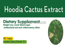 Hoodia Cactus 10:1Extract 90caps free shipping