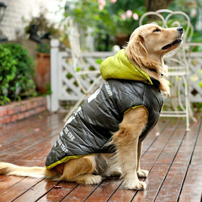 Одежда Для Больших Собак