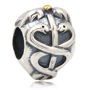 Registered Nurse Medical Symbol Authentic 925 Sterling Silver Bead Fits Pandora Charms Bracelets<br><br>Aliexpress
