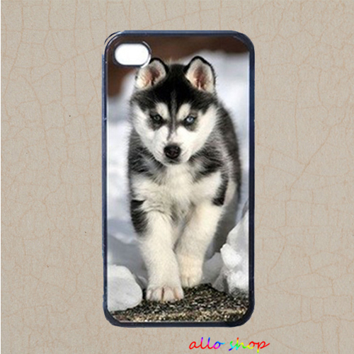 Siberian Husky Puppy fashion original cell phone case cover for iphone 4 4S 5 5S 5C 6 6 plus #1124(China (Mainland))