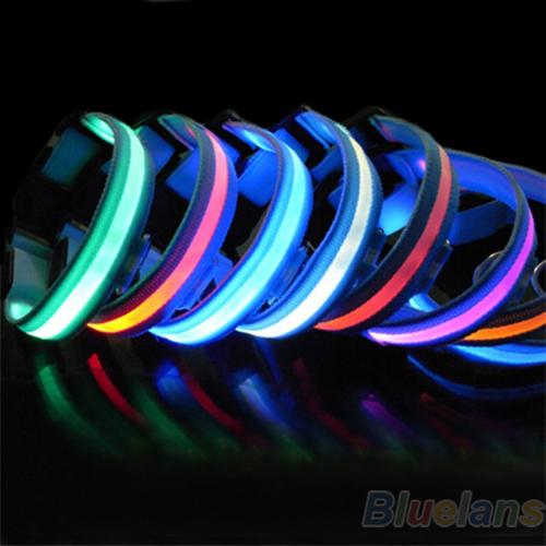 New Glow LED Dog Puppy Pet Night Safety Collar Flashing Light Up Collar Blue Nylon 7 Colors 1N37(China (Mainland))