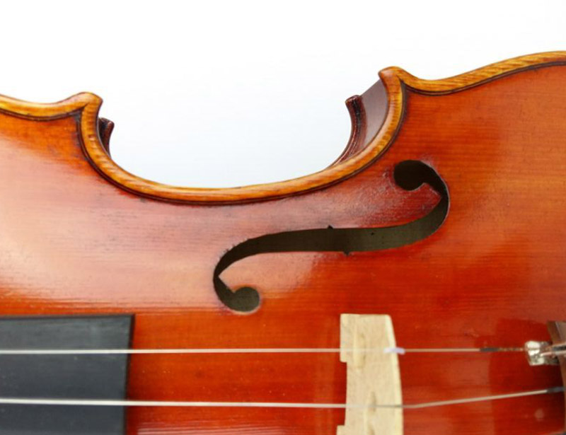 50-Years-Old-Spruce-The-     Violin