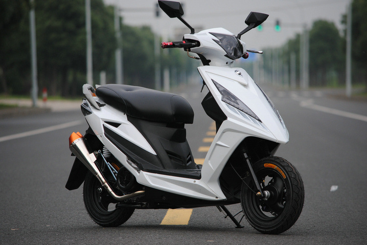 gas powered scooter 49cc gas scooters for sale petrol scooter(GS-019)(China (Mainland))