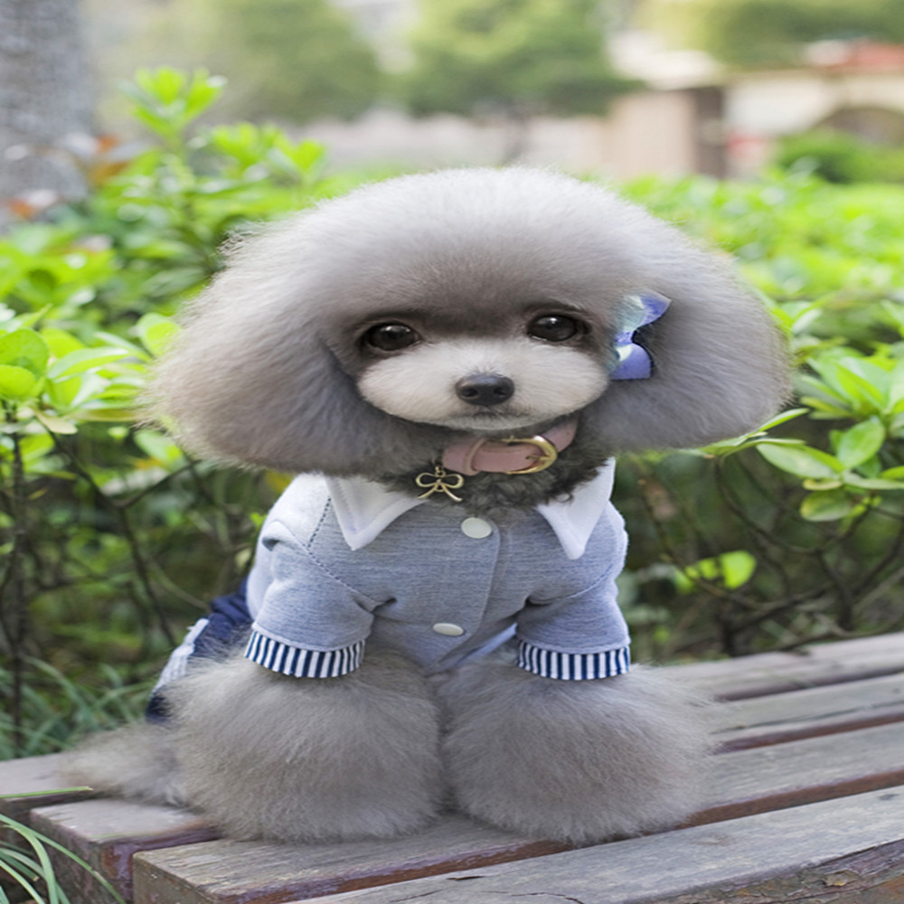 New Pet Dog Clothes Small Dog Clothing Warm Puppy Coats Jacket Cat Costumes Cheap Chihuahua Clothes Spring Shirts Suit