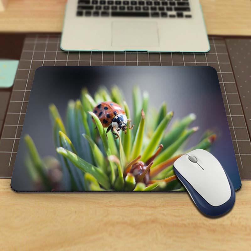 achetez en gros coccinelle souris d 39 ordinateur en ligne des grossistes coccinelle souris d. Black Bedroom Furniture Sets. Home Design Ideas