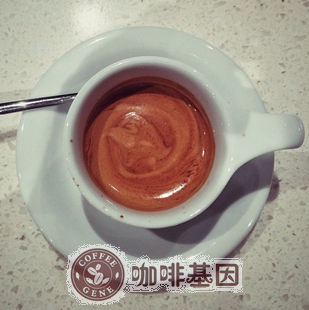Free shipping 454g Coffee gene of the gene espresso coffee beans fresh green slimming coffee beans