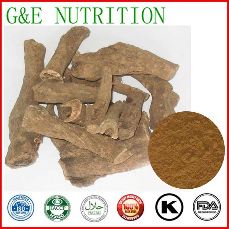GMP Improved Natural Costustoot extract 1000g