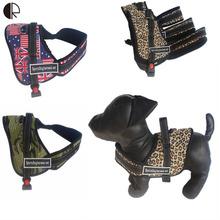 5 Цвета Высокая Прочность Собаки Жгут Пэт Спорта Шлейка и Поводок Led Набор Pet Shop Собака Поставки Большая и Маленькая Собака Товаров HP748