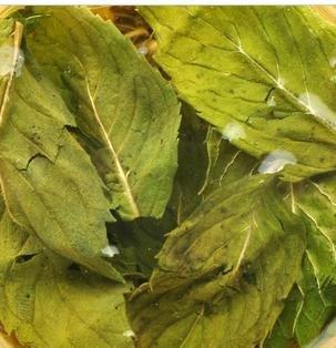 Free shipping 250g Mint leaf tea ,health tea+Free gift(China (Mainland))