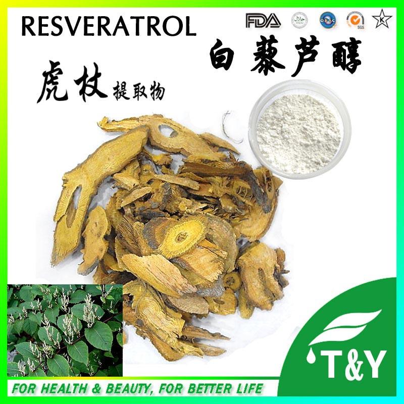 Factory price Trans Resveratrol natural Polygonum cuspidatum Extract 30g
