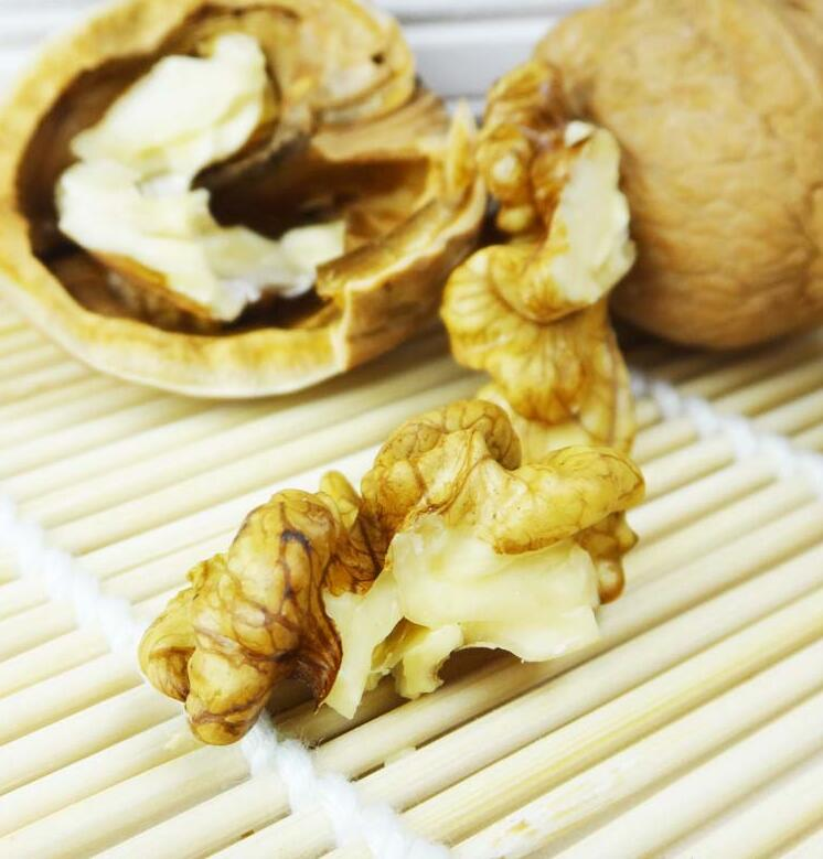 Chinese Organic Raw Walnuts in Shell, with abundant nutrition of local specialties in big promotion(China (Mainland))