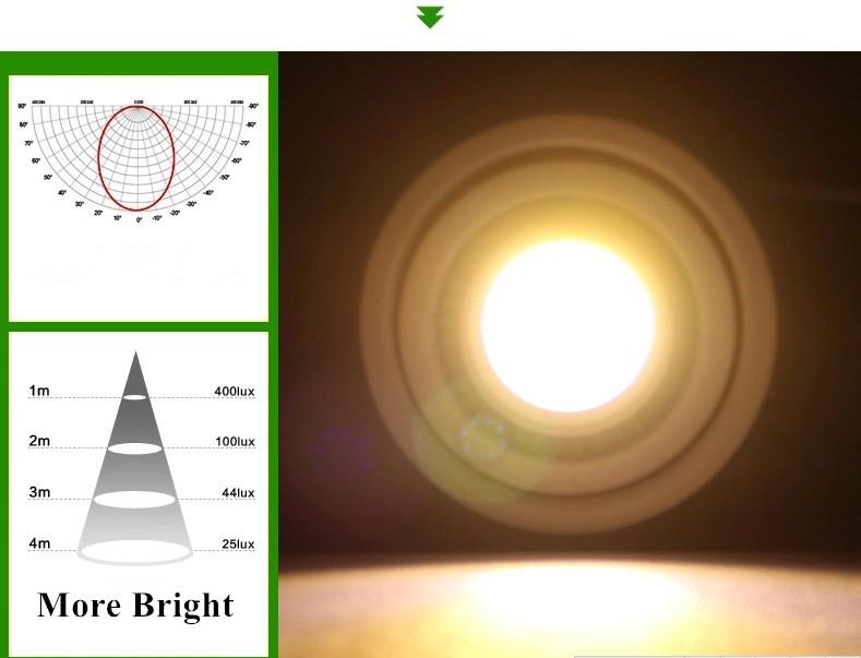 downlight 11