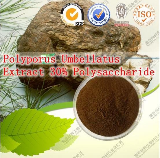500gram Polyporus Umbellatus (Zhu Ling) Extract 30% Polysaccharide Improve immunity<br><br>Aliexpress
