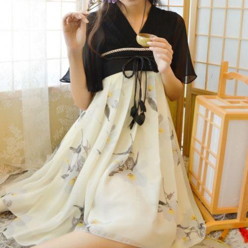 Chinese Tradition Hanfu Zixun Flower Dress Ink Painting Flying Sleeves Vintage Mori Girl Dress(China (Mainland))