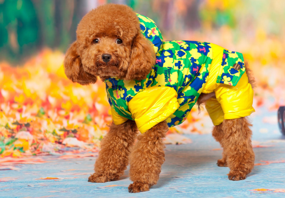 Warm Down Dog Clothes Winter Clothing Outdoor Sports Snow Dog Clothes High Quality Clothing For Dogs Parkas Winter Clothing(China (Mainland))