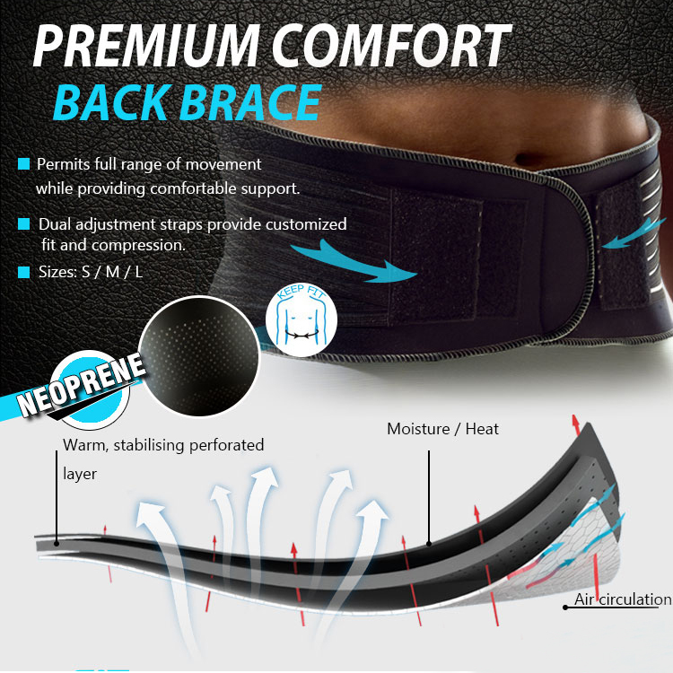 Waist Support Sports Safety Ergonomic Lumbar Pads Posture Support Belt Relieves Lower Back Pain Naturally for Men and Women()