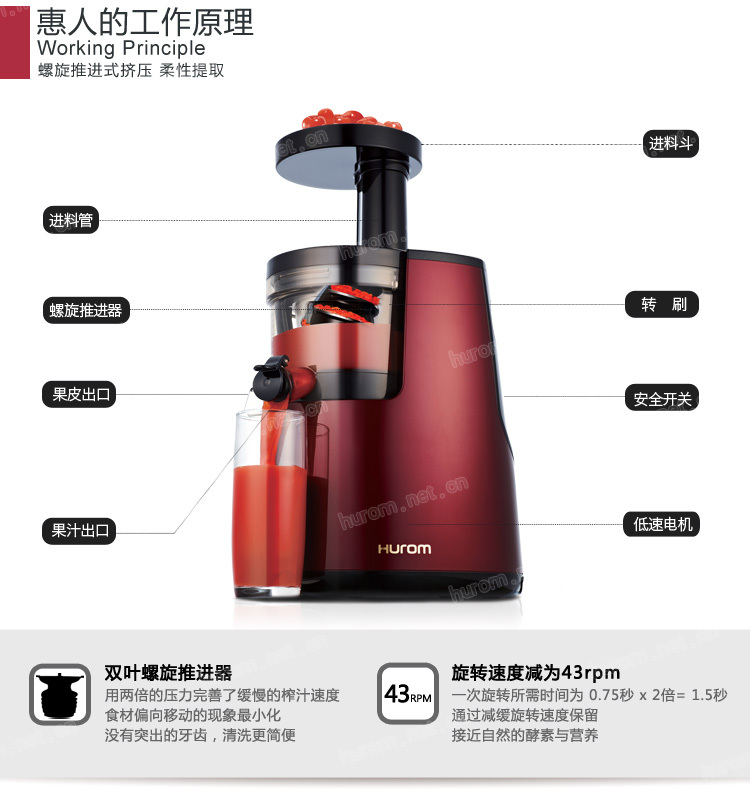 Juice Wizard Slow Juicer : (IMPORT) Hurom HU600WN Slow Juicer (Red) eBay