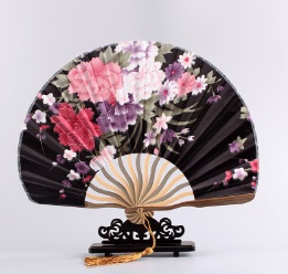 CAMMITEVER Grace Shell Summer Style Pocket Fan Folding Hand Held Fan Wedding Dance Favor Japanese Cherry Blossom Chinese Fans(China (Mainland))
