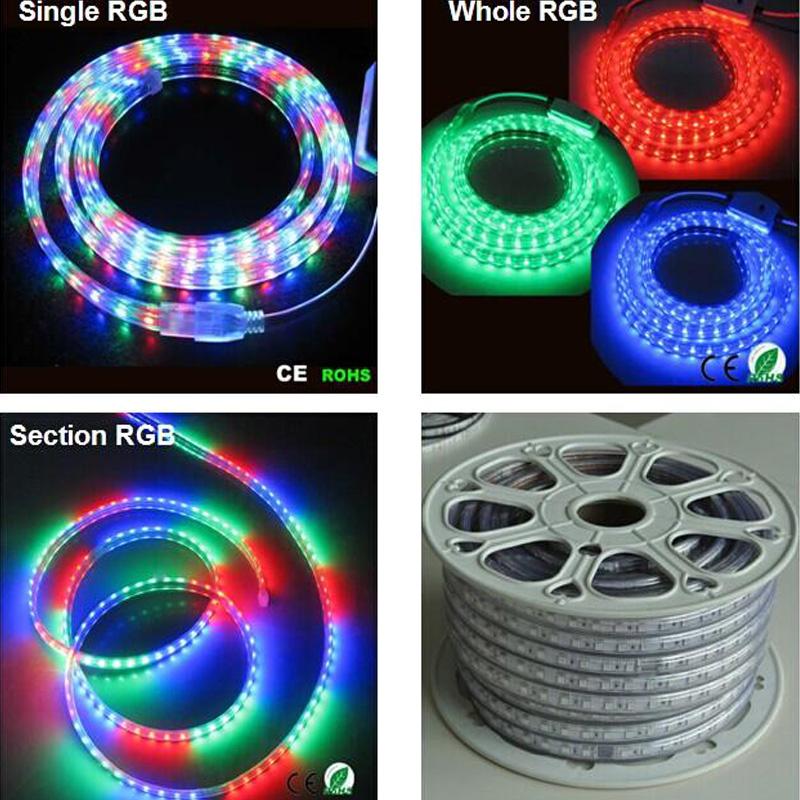 Фотография sale 10M 110V/220V High Voltage SMD 5050 RGB Led Strips Lights Waterproof + IR Remote Control + Power Supply