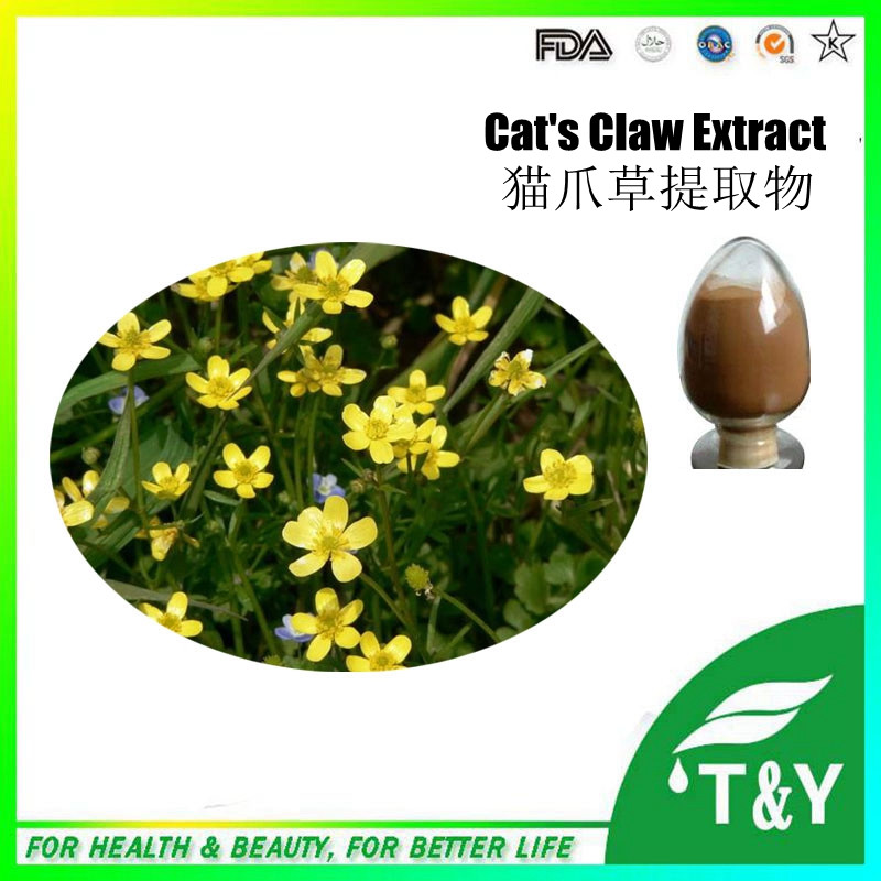 pure natural anti-tumor and anti-cancer Cats claw extract 600g/lot<br><br>Aliexpress
