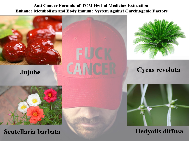 Formula of All Natural Herbal Medicine Extraction to Prevent and Cure Cancer and Tumors, Suppress Tumor Cells Growing<br><br>Aliexpress