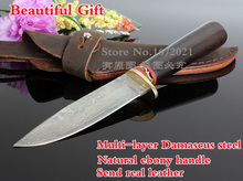 VG10 Damascus steel fixed hunting knife natural ebony handle outdoor survival knife tactical tool send leather Gift Collection