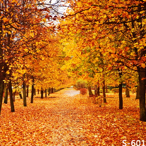 Aliexpress Buy Autumn Maple Tree Fallen Leaves 5X7ft
