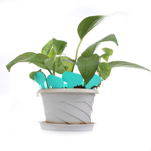 Free Shipping New Arrival 100Pcs T-type Plastic Nursery Garden Plant Label Flower Thick Tag Green Sticker Labels(China (Mainland))